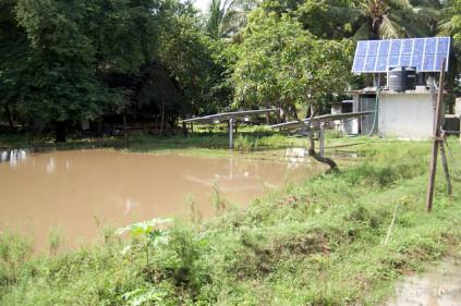 Spirulina im stillen Gewässer welches mit Photovoltaik zusätzlich aufgeheizt wird