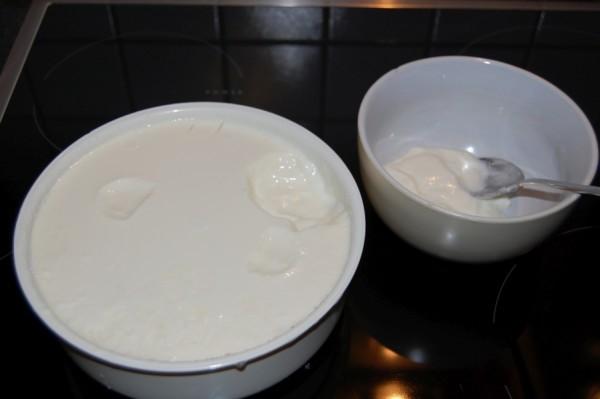 Der fertige Joghurt selbst hergestellt