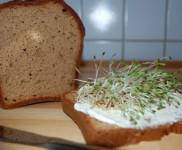 Perfektes Paleo Brot Rezept mit Mandelmehl