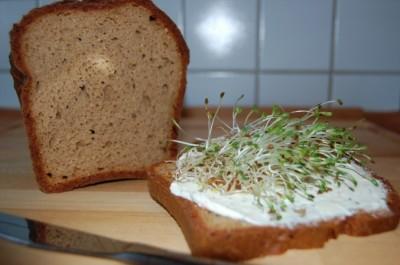 Spirulina Rezepte - Spirulinacreme auf Paleo Brot mit frischen Sprossen