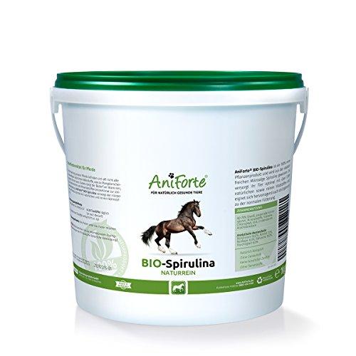 AniForte Bio-Spirulina naturrein 1 kg Vitalstoffe Ergänzung rohes Futter- Naturprodukt für Pferde -