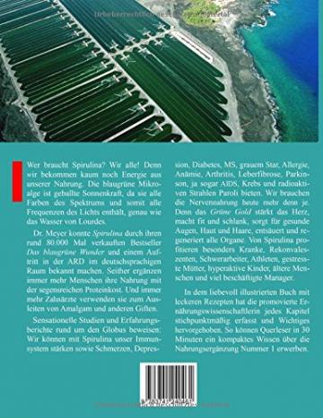 Spirulina Überlebensnahrung für ein neues Zeitalter: Erstaunliche Heilerfolge mit der blaugrünen Alge  Köstliche Rezepte mit der segensreichen Urkost -