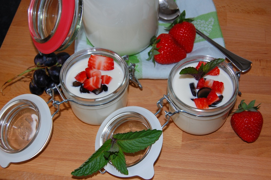 Selbstgemachter Joghurt mit Früchten der Saison