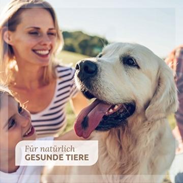 AniForte Bio-Spirulina 250 g - versch. Größen - Vitalstoffe Ergänzung rohes Futter- Naturprodukt für Hunde, Katzen und Pferde - 5